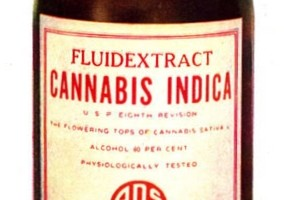 The Healing Powers of CBD, Cannabis Oil