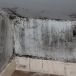 5 Signs that you Might Have Some Leakage in your House