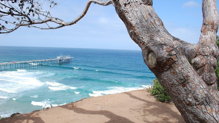 Looking to Set Up Camp in San Diego? 4 Essential Beach Camping Tips