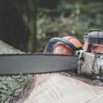 Don't Spend More Than $300 On A Chainsaw